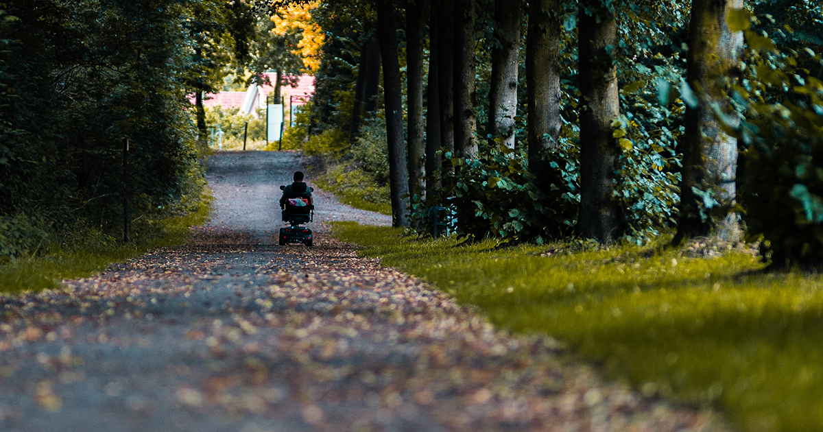 person in wheelchair goes down path of trees, leaves
