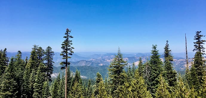 landscape photo of trees and mountains in Oregon