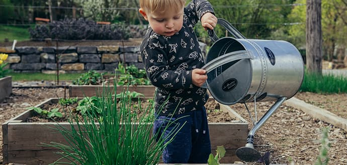 Toddler with watering can
