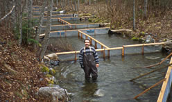 Man in waders stands in a river with fish enclosures