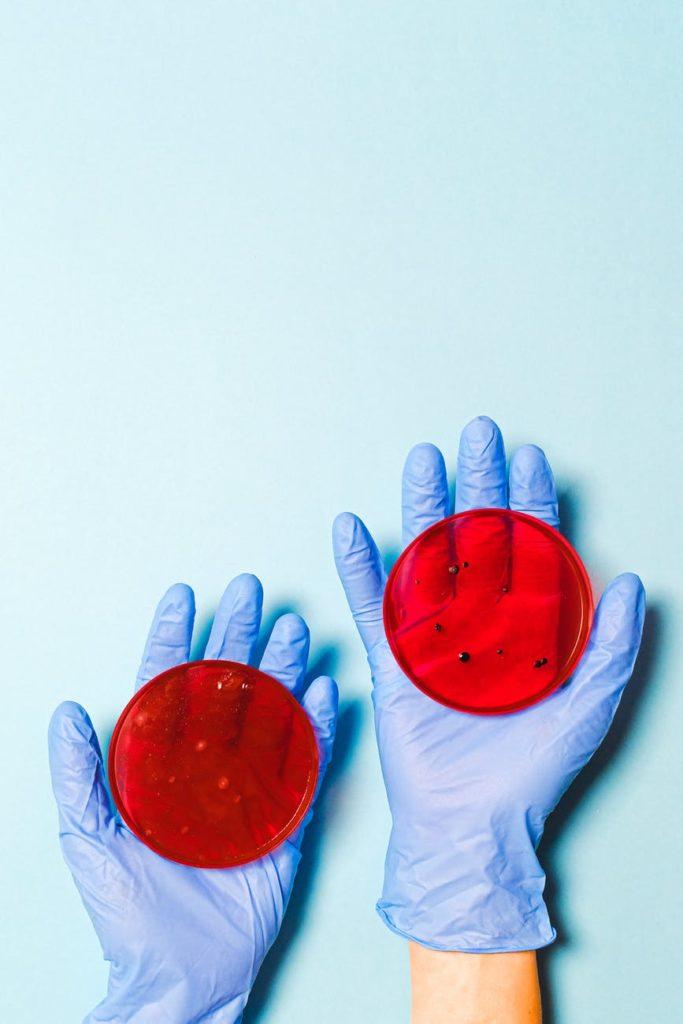 Stock photo of petri dishes