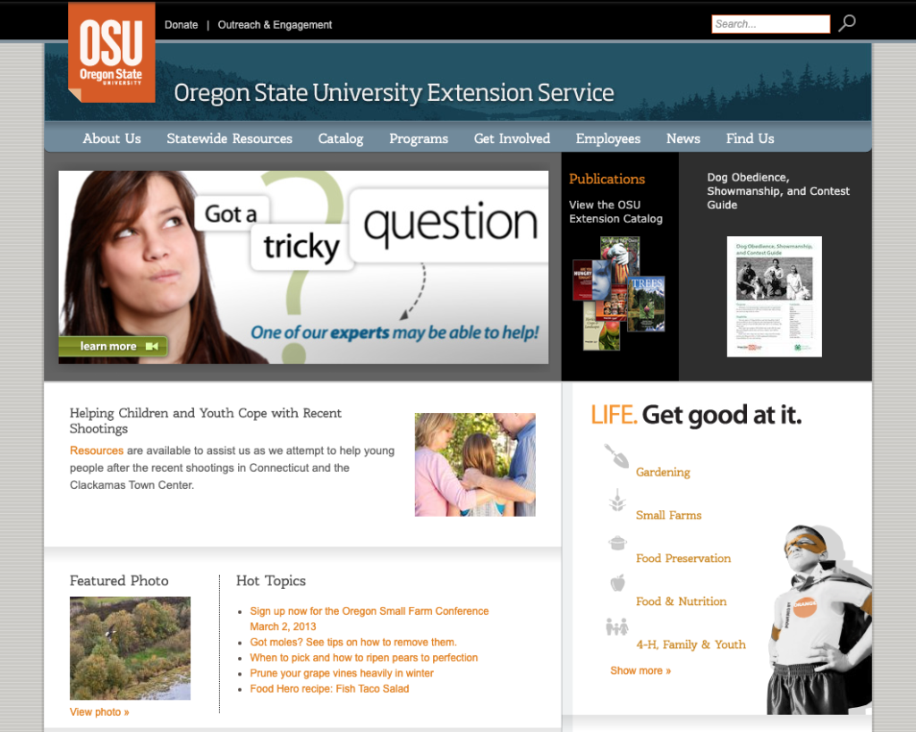 Extension homepage circa 2013