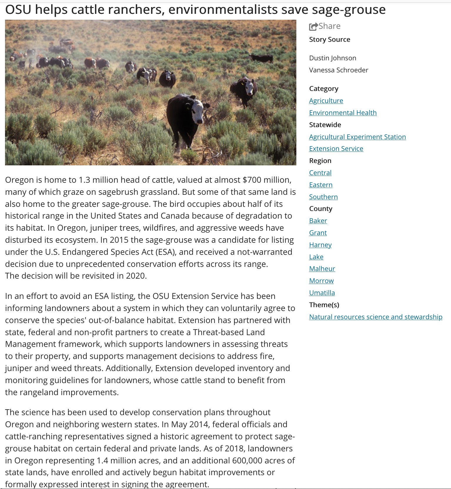 Screenshot of this impact story: https://ourimpact.oregonstate.edu/story/osu-helps-cattle-ranchers-environmentalists-save-sage-grouse