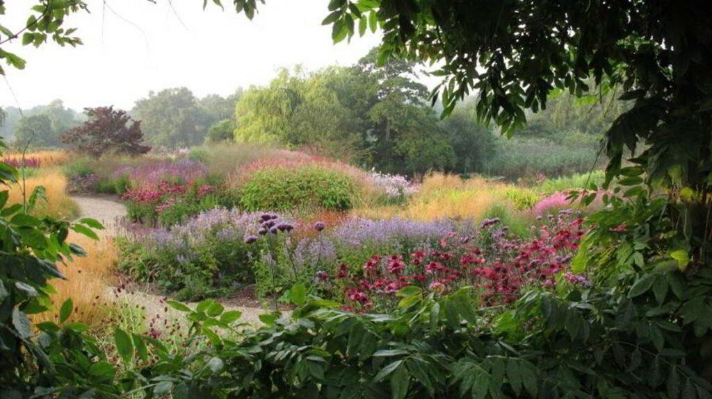 Flower-filled garden in Oudolf style