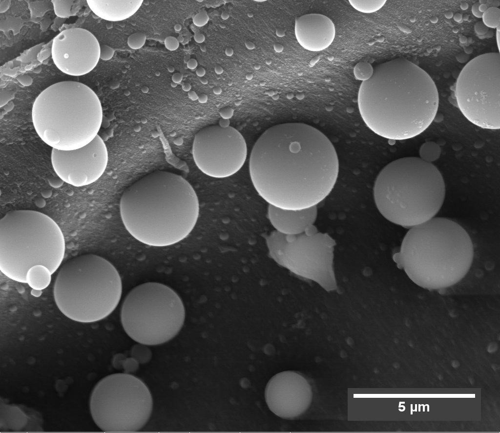 Lignin droplets on cellulose