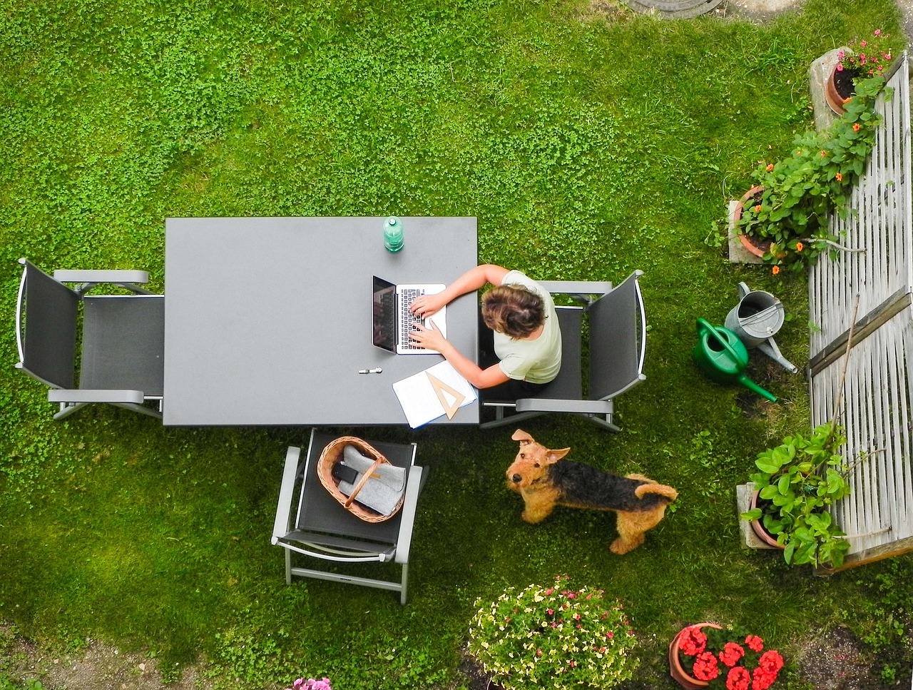 Birdseye view of person and dog at outdoor table in a garden, working on a laptop.