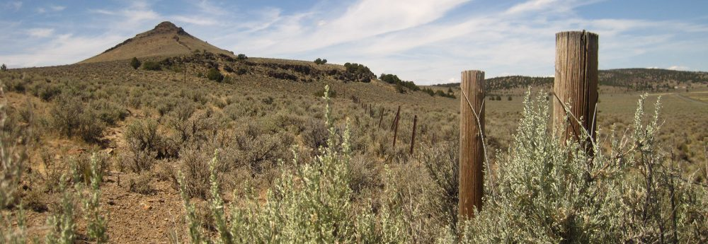 Threat-Based Land Management in the Northern Great Basin