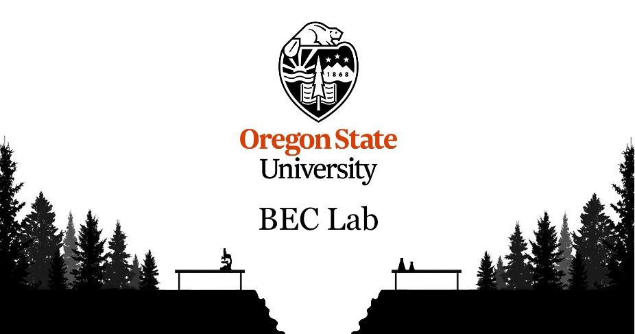 BEC lab logo