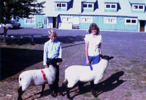 My mom and uncle Donald, showing lambs in the early 1980s.