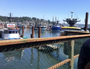 The Newport docks.