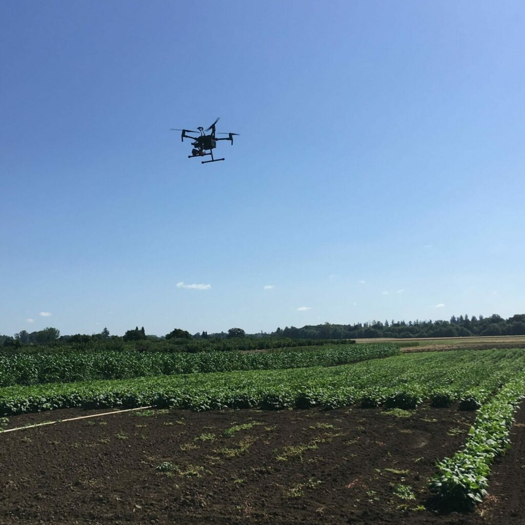 UAS flying over a research plot