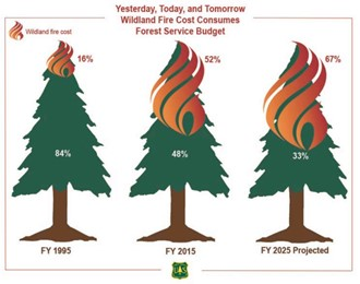 Figure 1. The cost of wildland fire (Preparedness, Suppression, FLAME, and related programs) as a Percentage of the Forest Service's Annual Budget